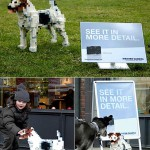leica_dogpixel_guerilla_marketing